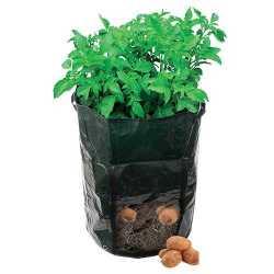 Sacchetto di piantatura sacchi per piante pianta 360x510mm